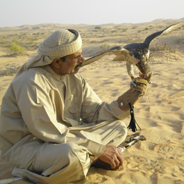 Our falconry heritage